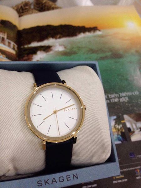 Đồng hồ Skagen SKW2510