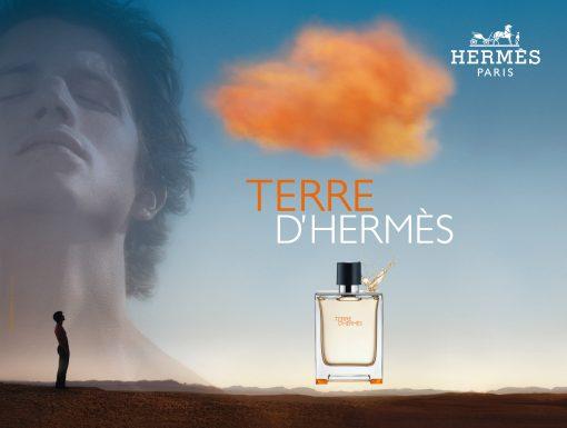 Nước hoa nam Terre D'Hermès EDT 100ml